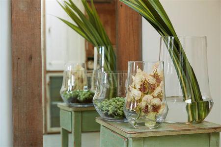 Slika za kategoriju Vaze